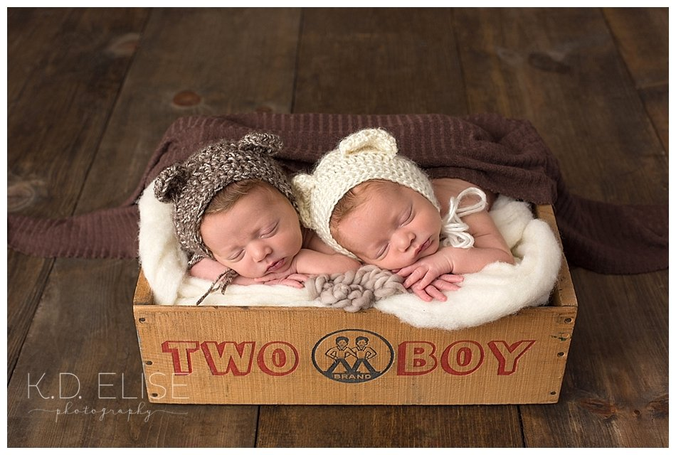 Twin newborn boys in a