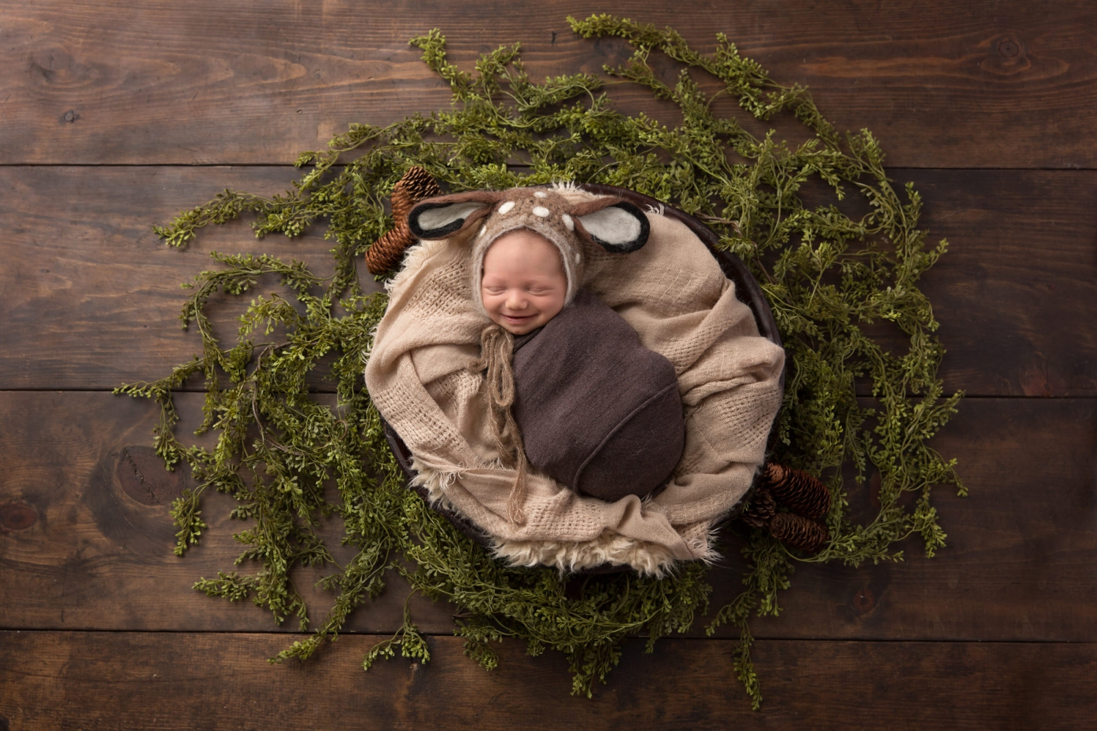 Newborn baby boy laying in a bowl with greenery around him. Photo by Pueblo-Colorado Springs photographer K.D. Elise Photography.